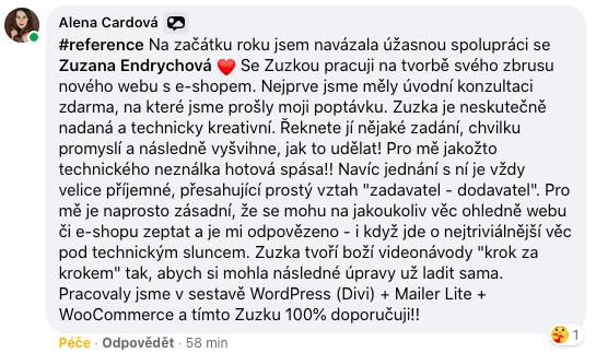 Reference Zuzi Endrych - recenze Zuzana Endrychova